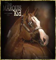 The Marquis Kid